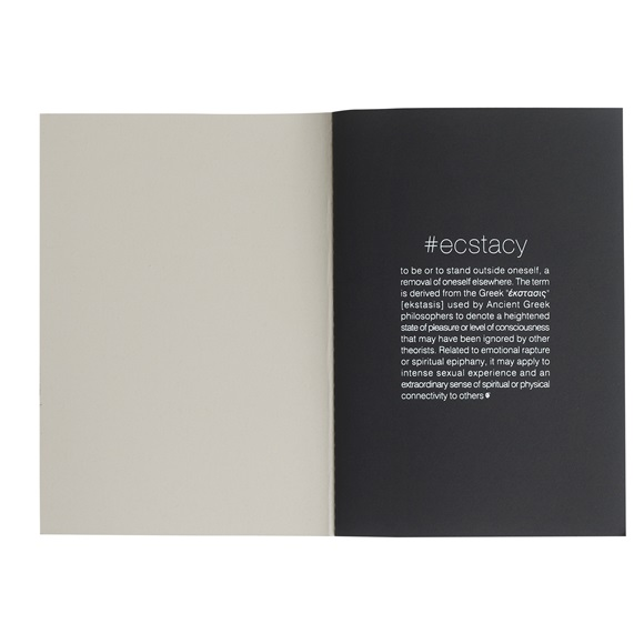 Notebook ECSTASY GREY
