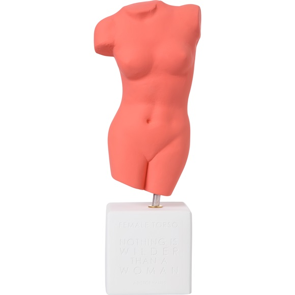 Female Torso Large
